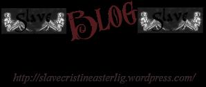 BlogLandingPoint LOGO